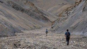 Zinchan, Markha Valley & Zalung Karpo La, Ladakh, Inde 64