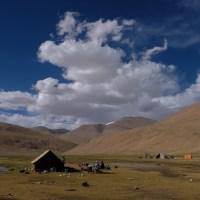 Tso Kar au Tso Moriri, Ladakh, Inde 31