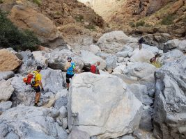 Wadi Aqabat El Biyout, Sayq Plateau 49