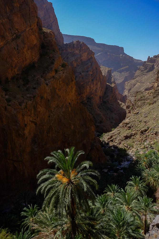 Wadi Hijri, Sayq plateau 25