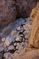 Mibam à Umq Bir, Wadi Tiwi, Oman 15