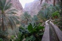 terrasses de Suwayh