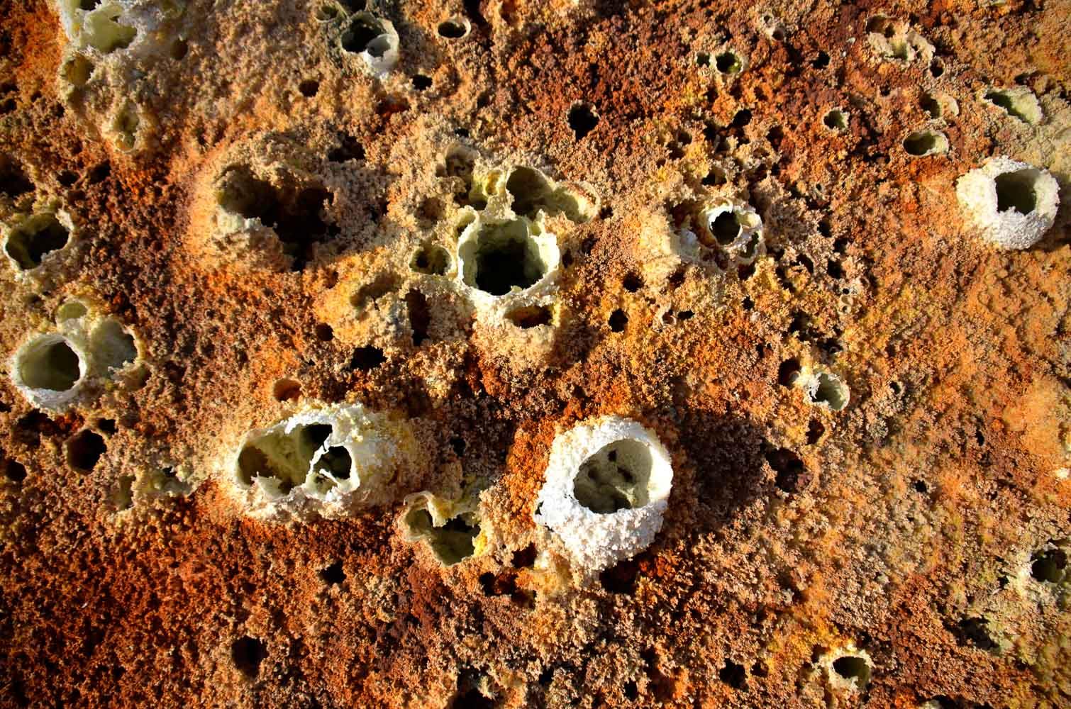 Les couleurs du sel, Danakil, Ethiopie 19