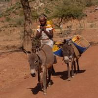 Harigwa Camp à Megab (2ème jour), Gheralta, Tigray, Ethiopie 12