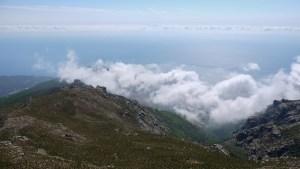 Monte Stellu, Pozzo, Corse 18