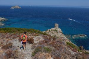 Macinaggio à Bargaggio, sentier des douaniers, Cap Corse 38