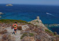 Macinaggio à Bargaggio, sentier des douaniers, Cap Corse 21