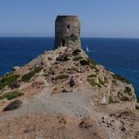 Macinaggio à Bargaggio, sentier des douaniers, Cap Corse 40