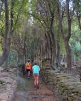 Les crêtes de Pinu, Cap Corse 8