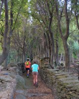 Les crêtes de Pinu, Corse 6