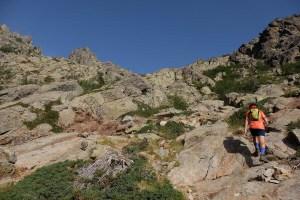 Monte Oro, Vizzanova, Corse 9