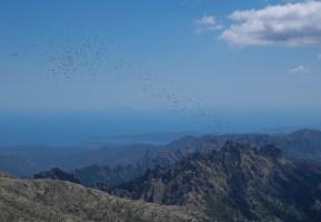 Aiguilles de Bavella & Monte Incudine, Corse 35