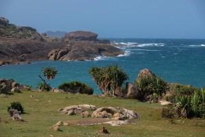 Pointe d'Evatraha, Tolanaro, Anosy, Madagascar 40