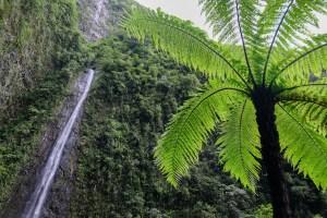 Cascades du Bras d'Anette, Saint-Benoit, La Réunion 11