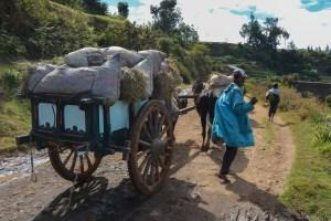 Circuit Betafo, Antsirabe, Madagascar 29