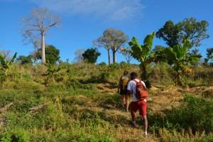 Begidro à Tsimafana, Tsiribihina, Morondava 54