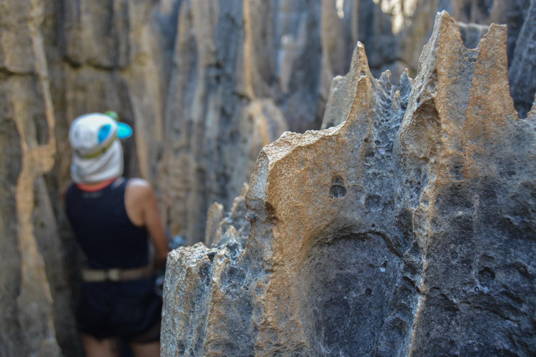 Tsingy de Bemaraha, Bekopaka 49