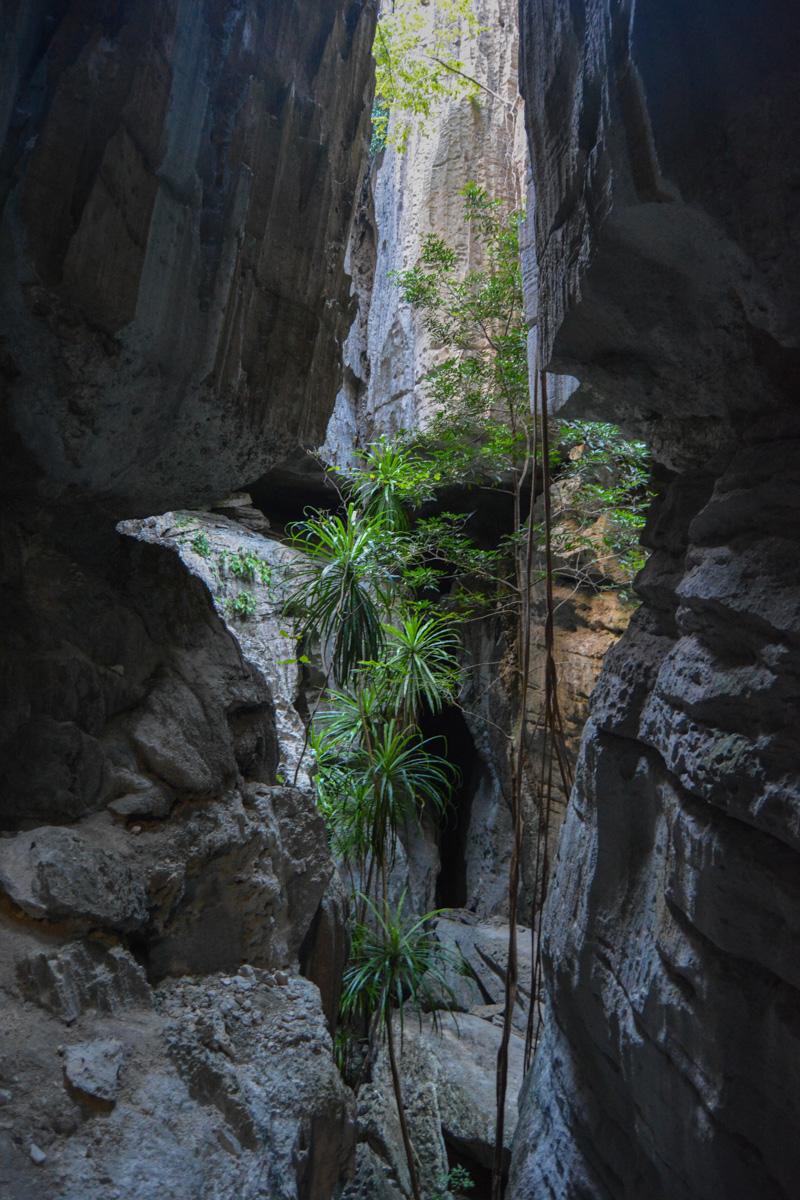 Tsingy de Bemaraha, Bekopaka 63