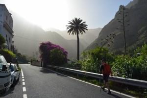 Barranco Agaete & Tamadaba, Gran Canaria 8