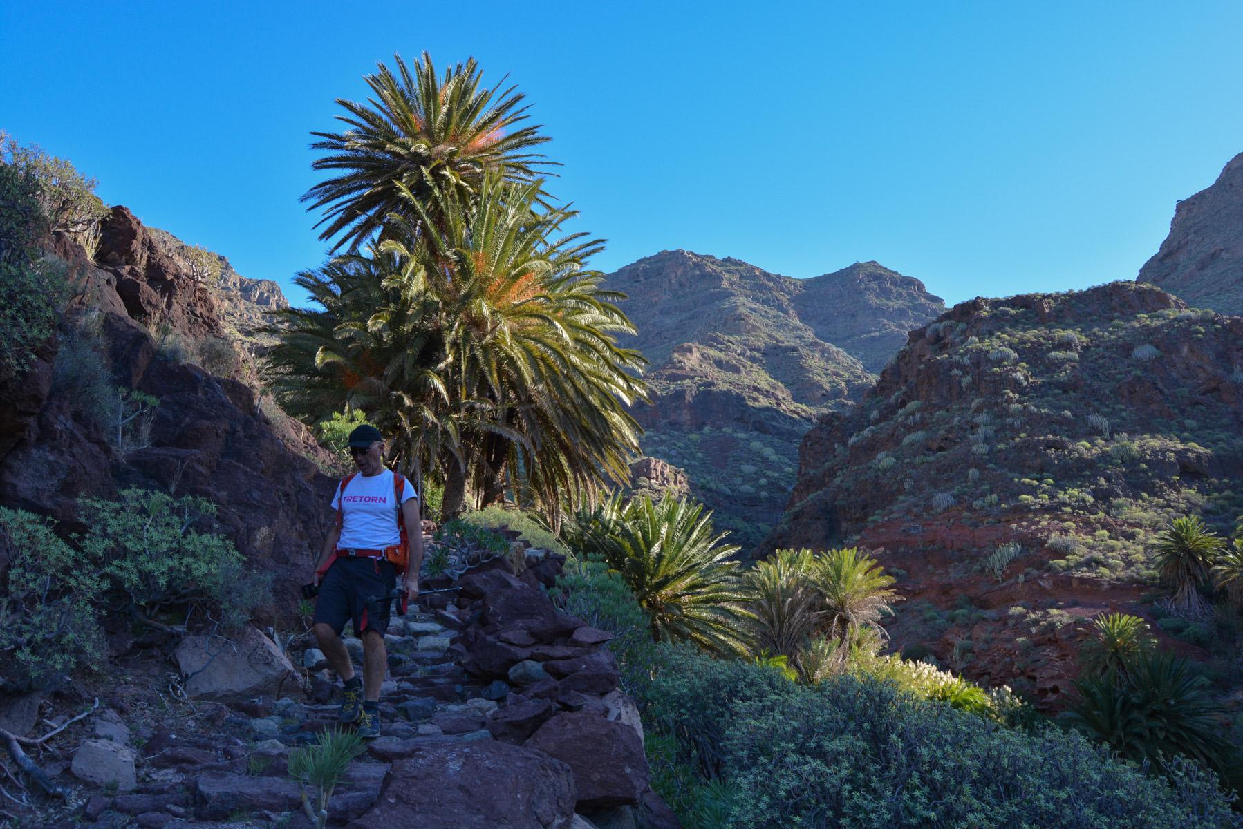 Camino de Güi-Güi, Gran Canaria, Espagne 33