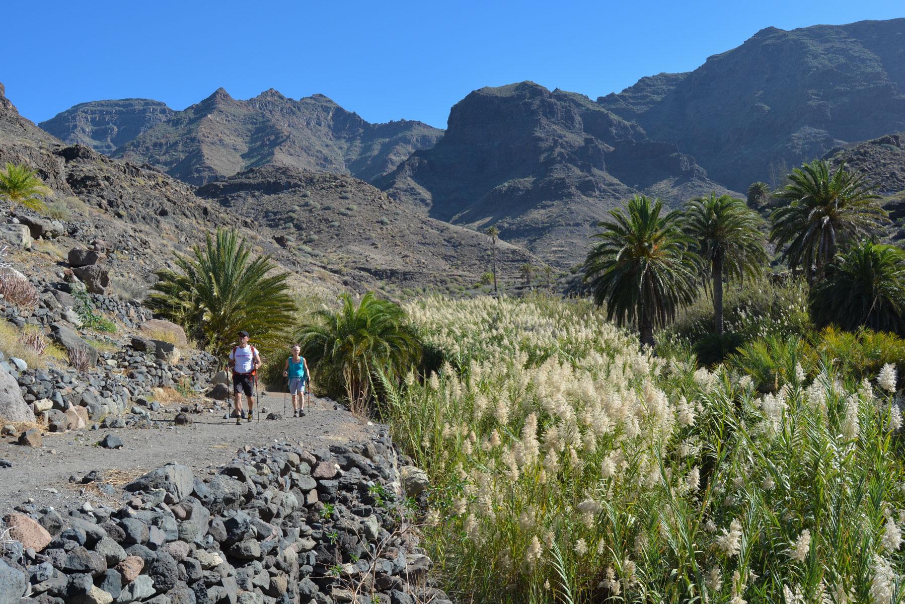 Camino de Güi-Güi, Gran Canaria, Espagne 51