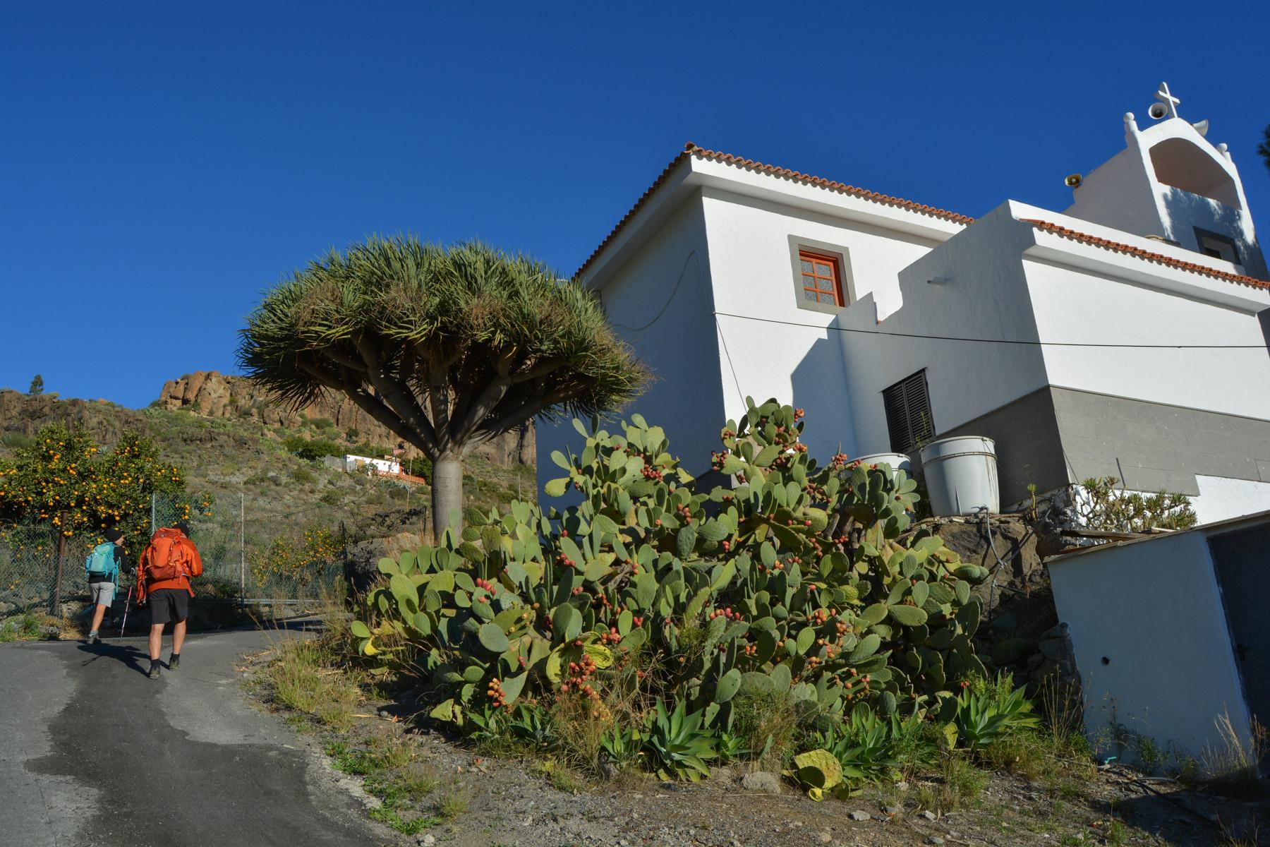 Montaña de Tauro, Gran Canaria, Espagne 6