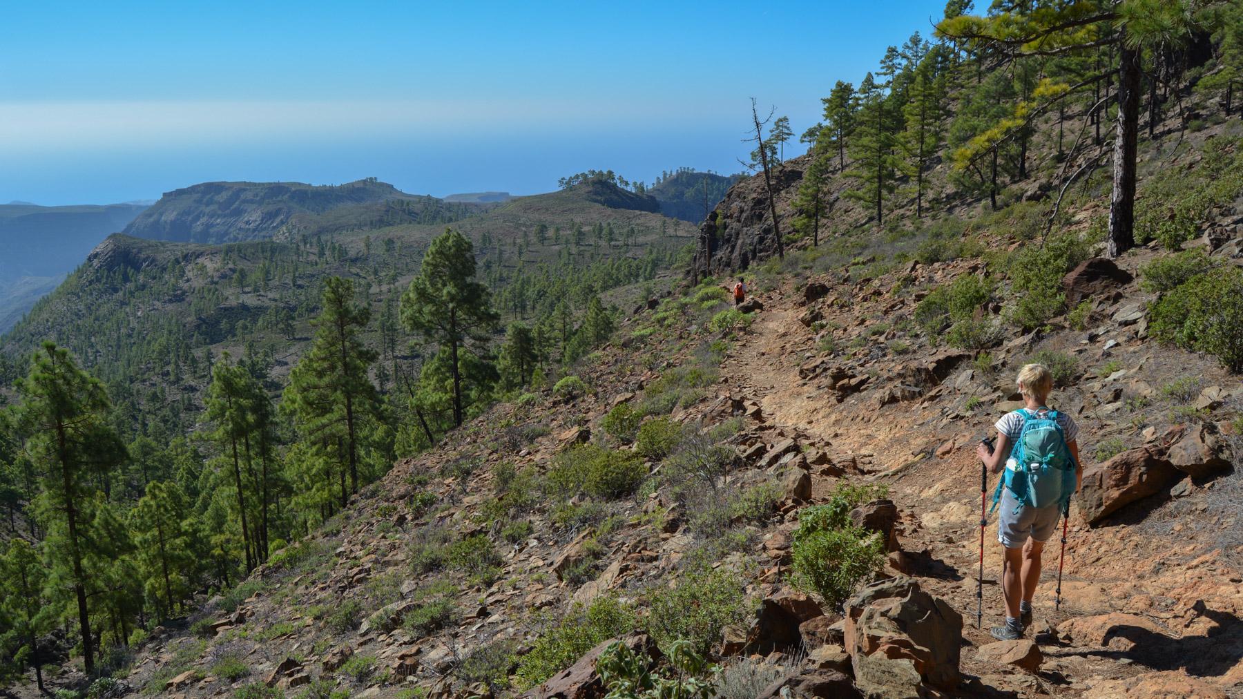 Montaña de Tauro, Gran Canaria, Espagne 21