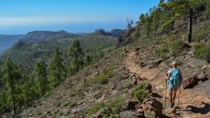Montaña de Tauro, Gran Canaria 20