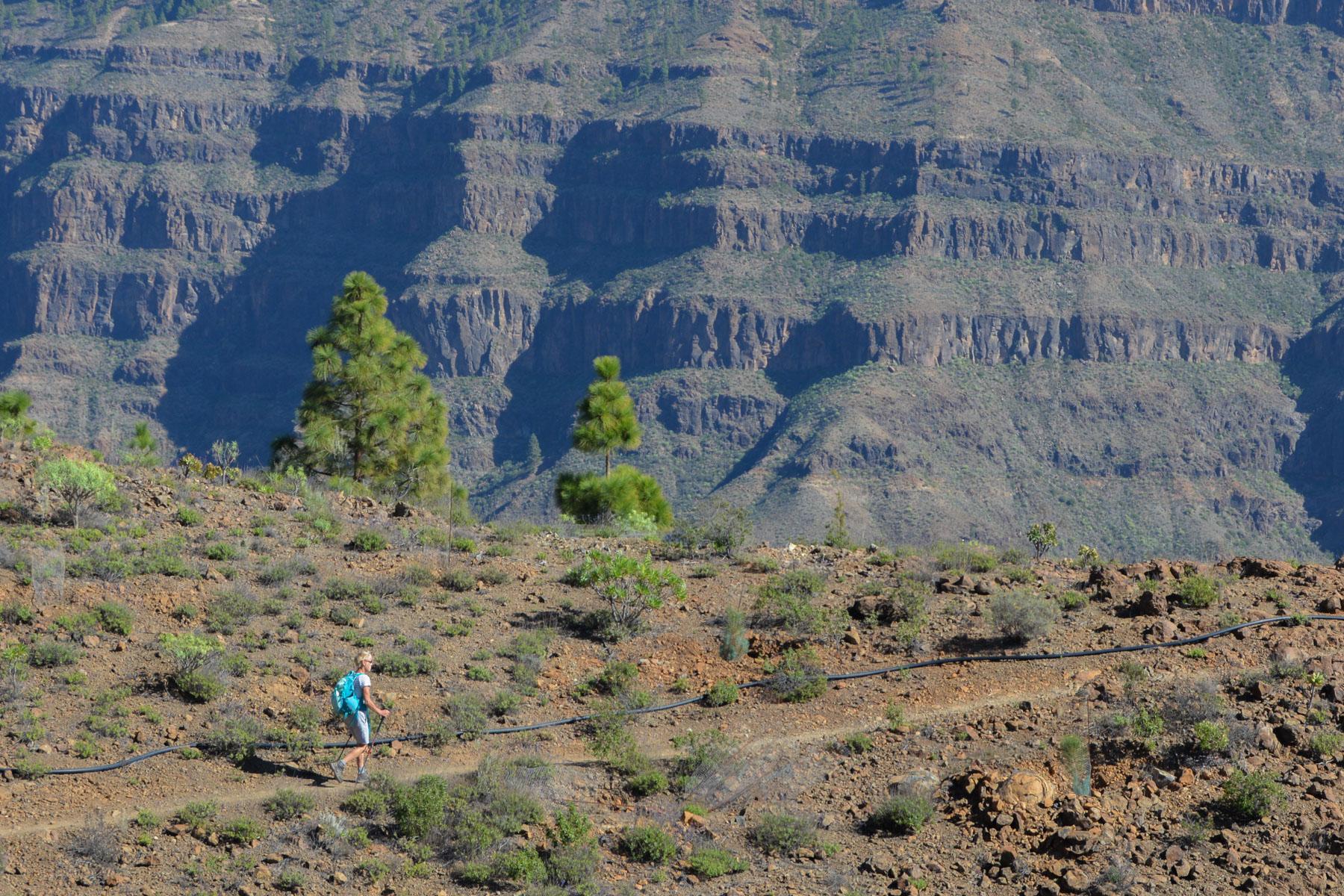 Montaña de Tauro, Gran Canaria, Espagne 32