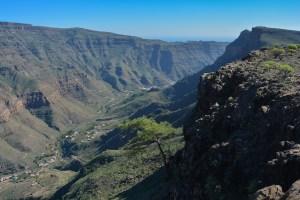 Montaña de Tauro, Gran Canaria 33