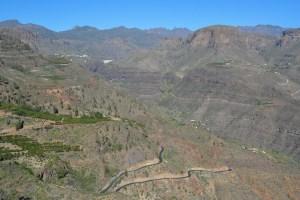 Montaña de Tauro, Gran Canaria 47