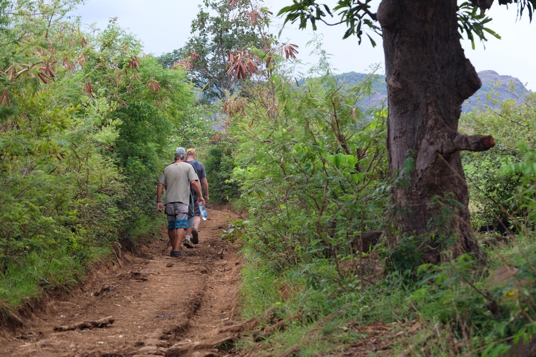 La vallée d'Antongombato, Joffreville 12