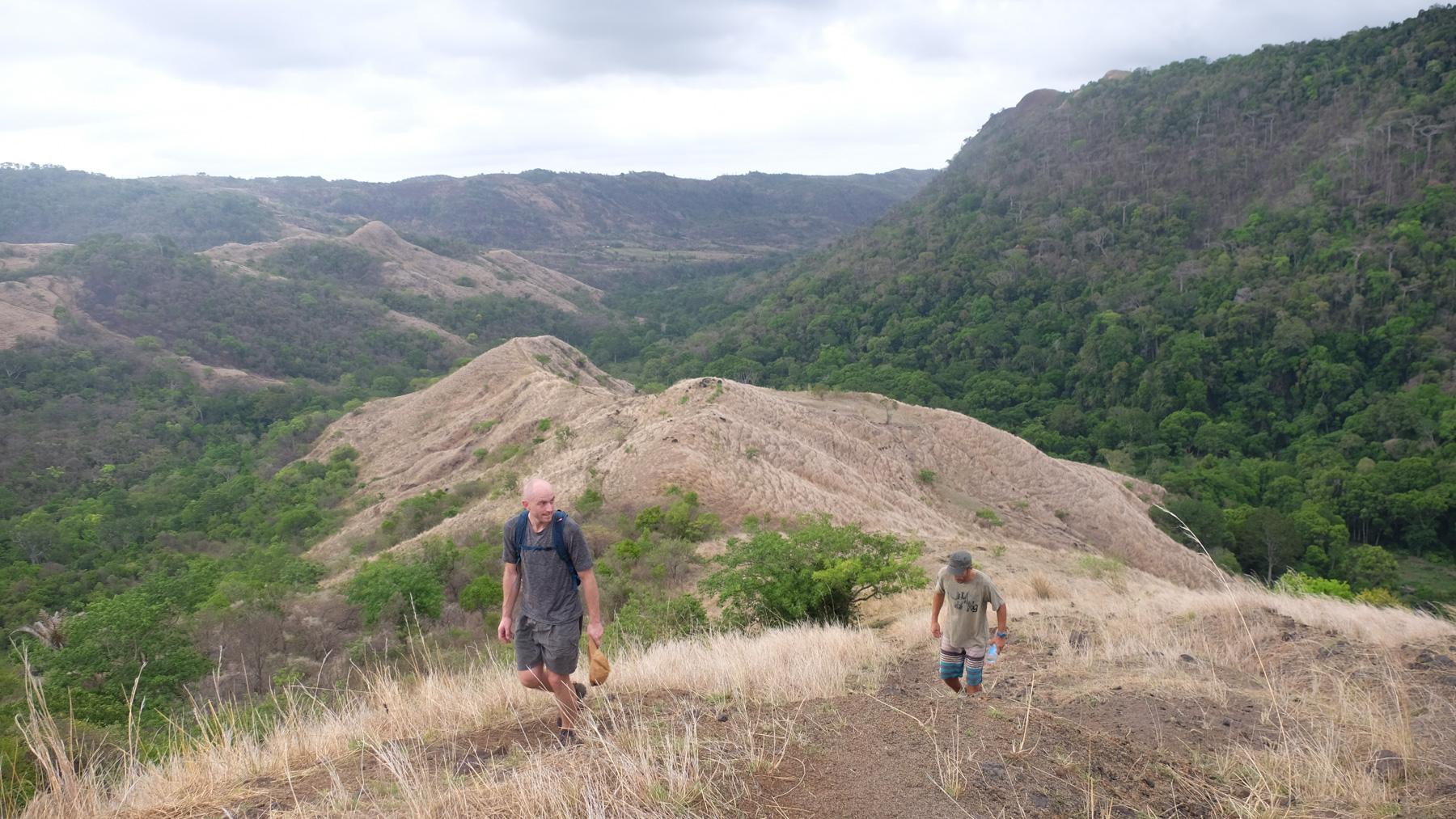 La vallée d'Antongombato, Joffreville 33