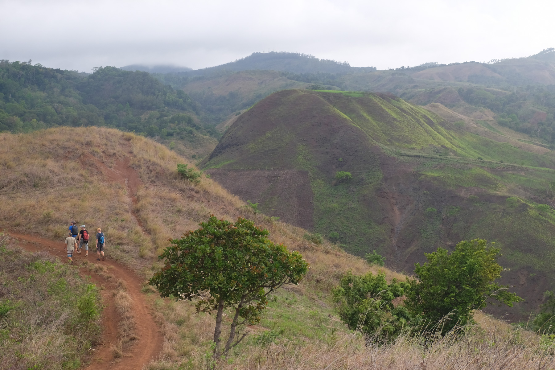 La vallée d'Antongombato, Joffreville 45