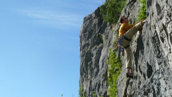 Patagonia Rock Climbing Pants