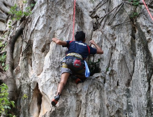 TRX and Climbing, how does it benefit you?