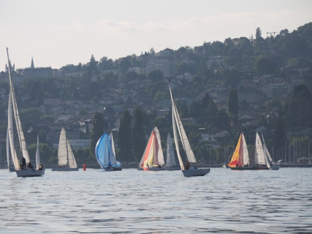Sailing. Race.