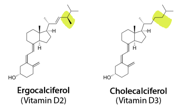 Image result for cholecalciferol ergocalciferol