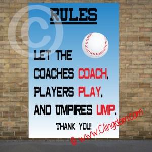 rules umpires