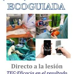 Terapias Ecoguiada 1