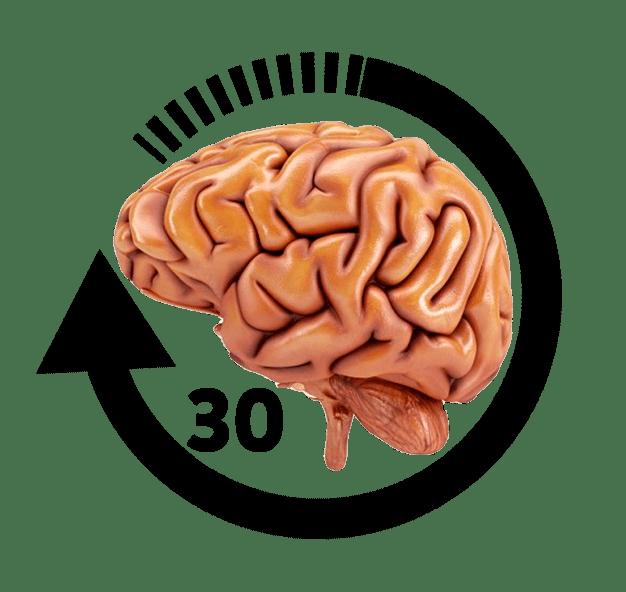 El cerebro necesita automatizar los ejercicios de masticación y de respiración nasal durante 30 días