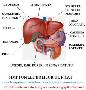 simptomele-bolilor-de-ficat