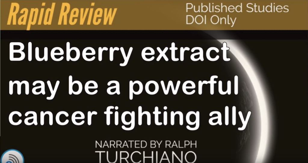 Berry gives cancer therapy a boost