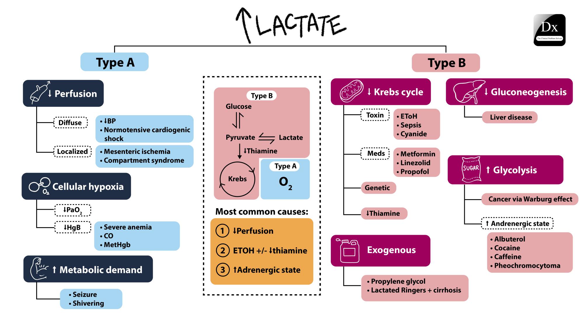 Lactate Acidosis