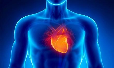 factores-riesgo-cardiovascular