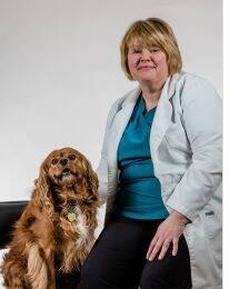 Northgate Pet Clinic Doctors