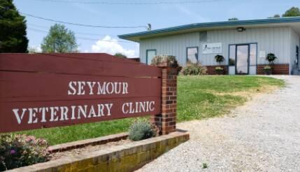 Seymour Vet Clinic Hours