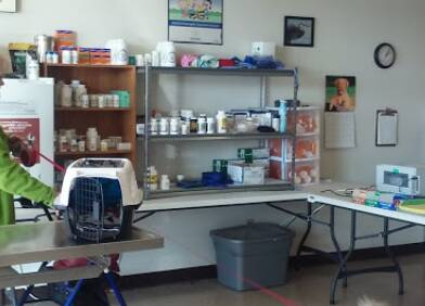 Omaha Pet Vaccination Clinic Omaha