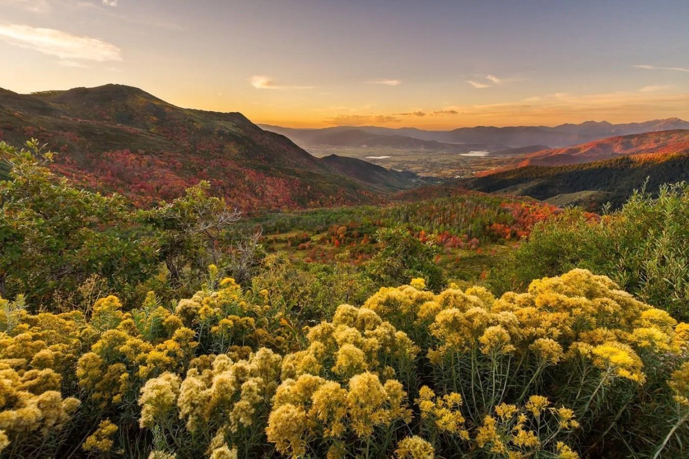 Big Mountain Fall Sunrise - Utah Landscape Photography