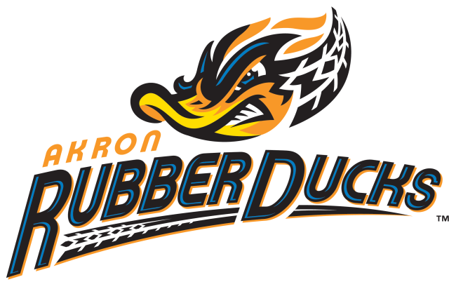 Image result for rubber ducks baseball logo